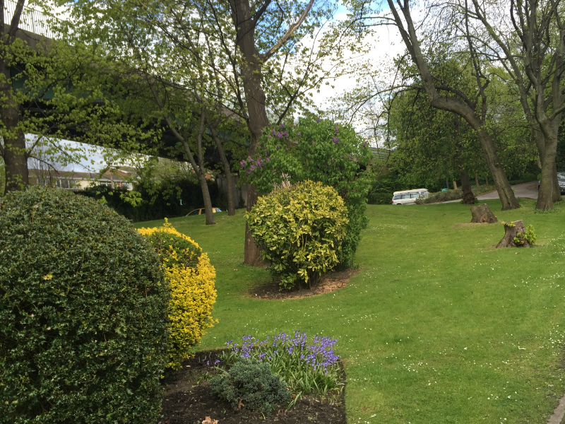 the grounds of the sheffield cbt clinic